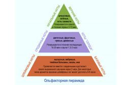 Пирамида раскрытия нот